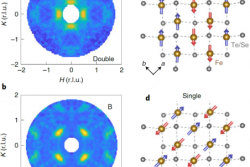 Electronic Properties of the Bulk and Surface States of Fe1+yTe1−xSex