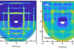 Two-dimensional Overdamped Fluctuations of the Soft Perovskite Lattice in CsPbBr3