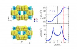 Large Linear Magnetoelectric Effect in DyCrO4