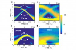 Extended Anharmonic Collapse of Phonon Dispersions in SnS