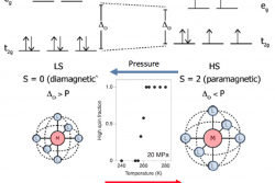 Spin-Crossover Transition Leads to Giant Barocaloric Effect