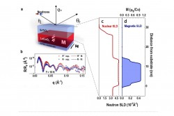 Symmetry Mismatch Controls Magnetism ​in a Ferroelastic Film​