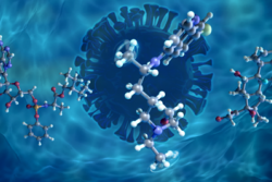 Hydration-Induced Disorder and Methyl Rotation in Potential COVID-19 Treatment Drug Molecules
