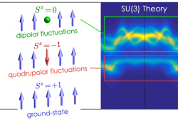 Quadrupolar Fluctuations in a Spin-1 Magnet