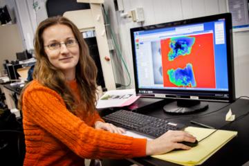 Maria Cekanova analyzing neutron radiographs